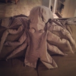 Spider Crab Halloween Costume
